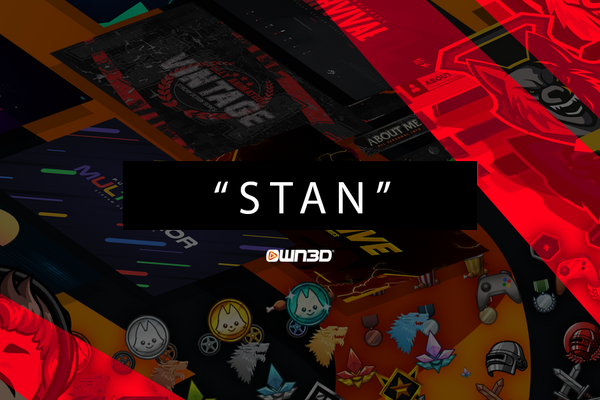 stan Meaning