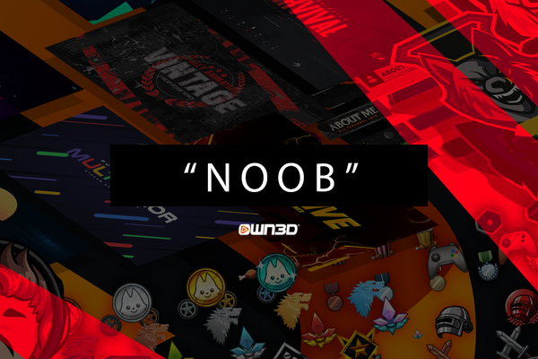 Noob Meaning